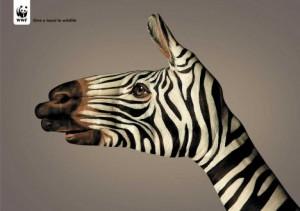 wwf-zebra